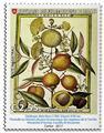 n° 1393/1398 - Timbre ORDRE de MALTE Poste