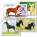 CHIENS : pochette de 200 timbres