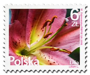 n° 4484 - Timbre POLOGNE Poste