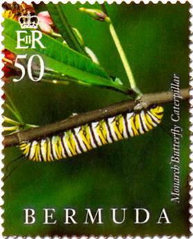 n° 1128 - Timbre BERMUDES Poste