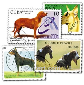 DOGS: envelope of 50 stamps