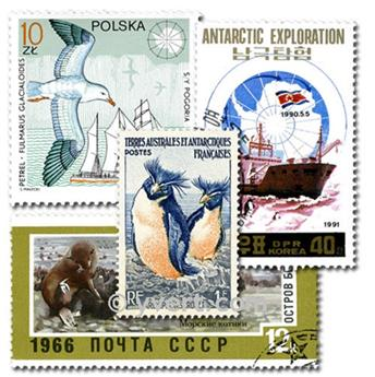 ANTARCTIQUE : pochette de 25 timbres
